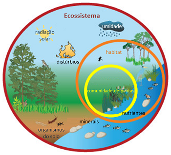 Diagrama do Ecossistema