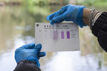 Testing phosphate levels in a water sample